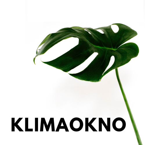 Workshop KlimaOkno